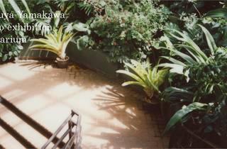 Tetsuya Yamakawa: Herbarium