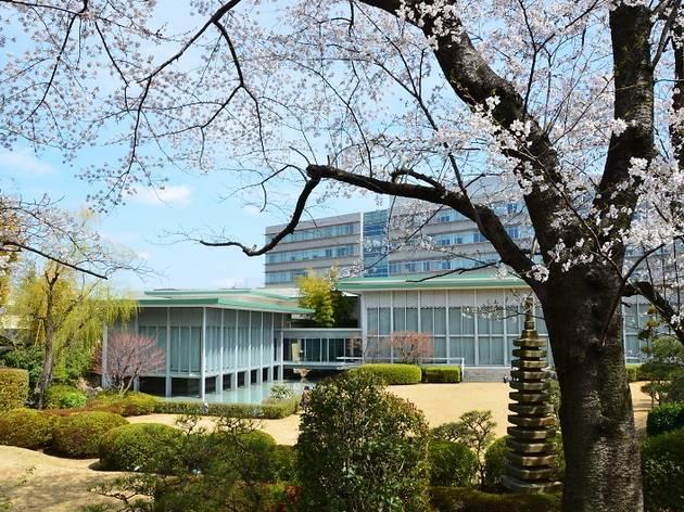 駒澤大学 深沢キャンパス一般開放