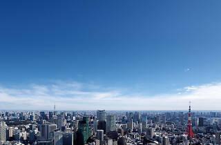 東京シティビュー