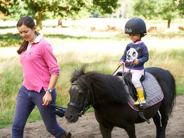 Ride a Shetland pony across Richmond Park with Stag Lodge Stables