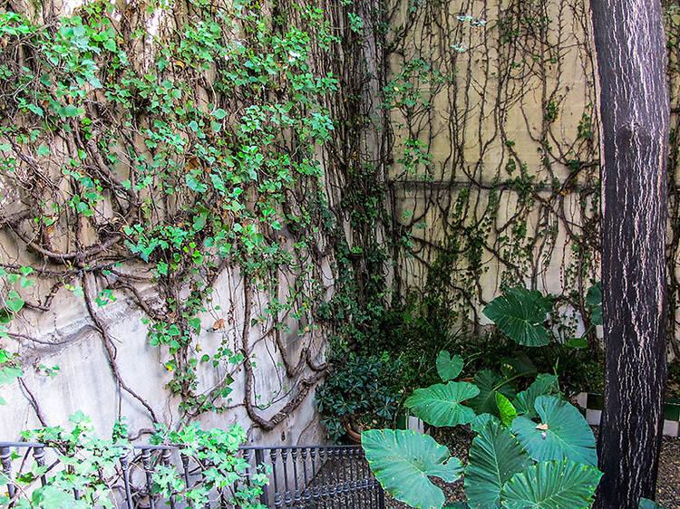 Un jardí secret