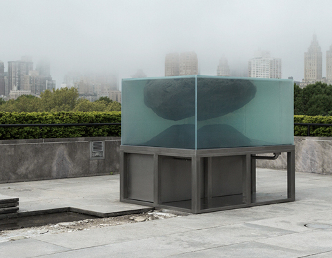 """The Roof Garden Commission: Pierre Huyghe"""