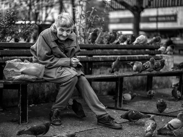 A lady feeds the pigeons.
