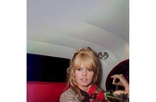 Ray Bellisario: Brigitte Bardot