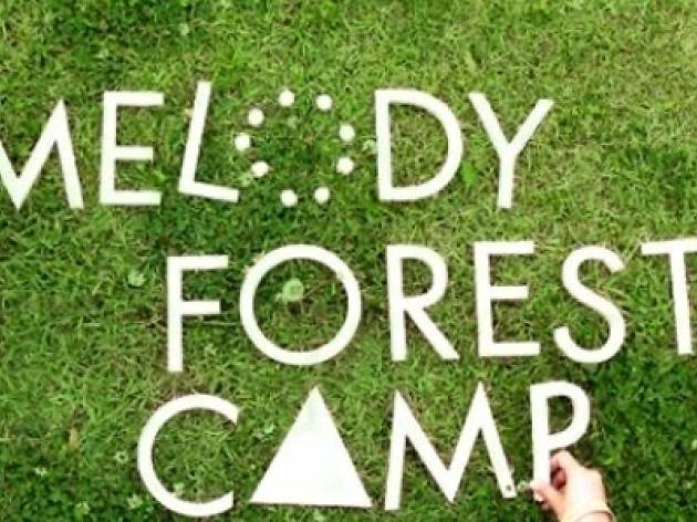 Melody Forest  Camp