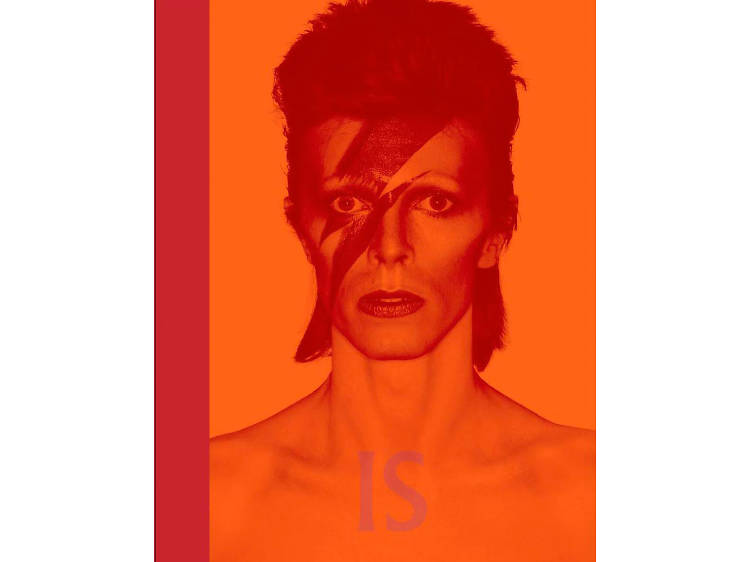 <Daivd Bowie is Inside>
