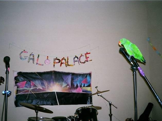 Gal Palace