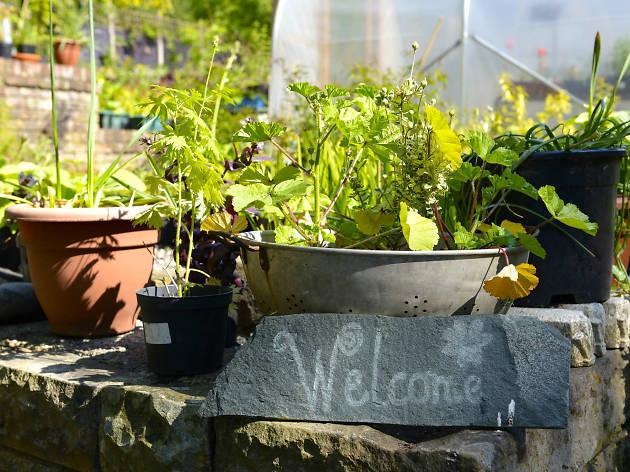 Garden Needs