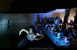 Grec 2015: Epíleg d'un inici (El secret de les meduses)