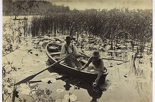 Gathering Water Lilies by Peter Harry Emerson, 1886, platinum print.