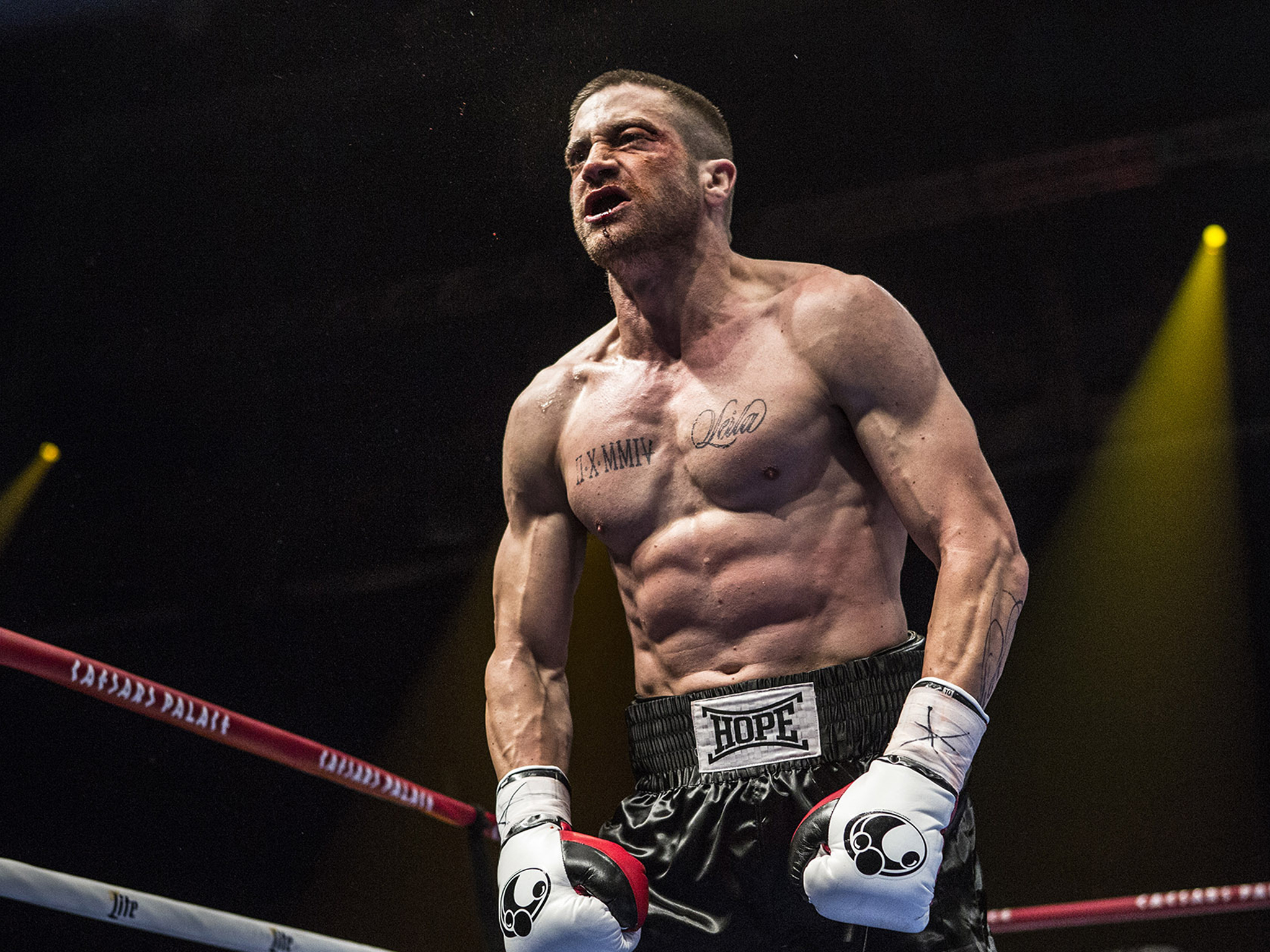Jake Gyllenhaul in South Paw Photo: Scott Garfield © 2014 The Weinstein Company.