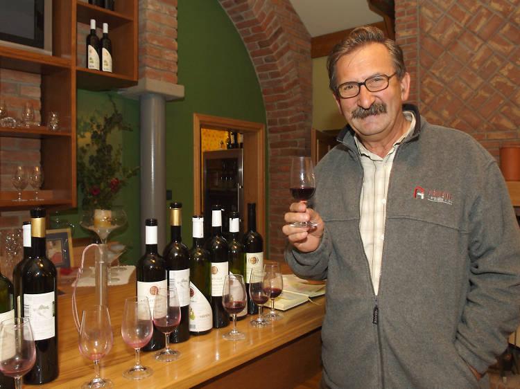 Take a wine tour of Kutjevo