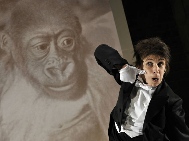 Kafka's Monkey, Young Vic