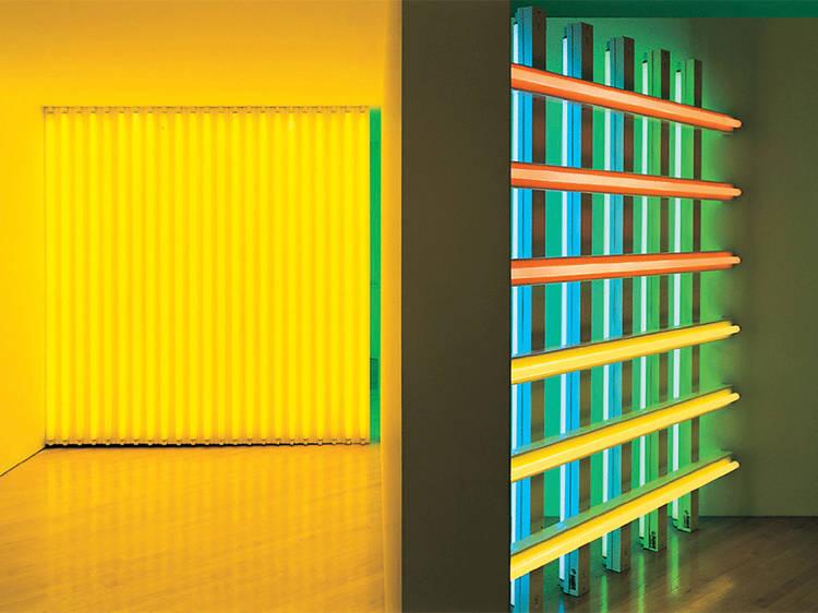 The Dan Flavin Art Institute