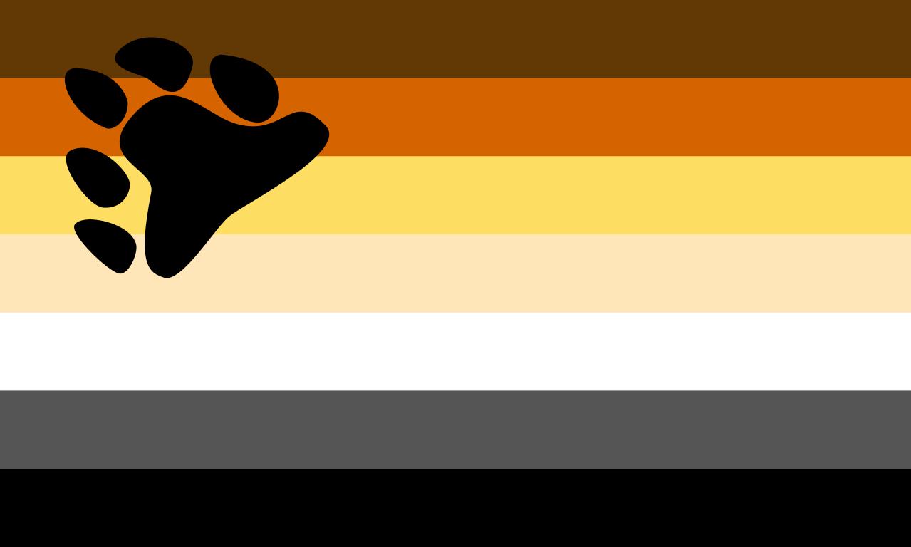 bandera oso