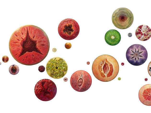 Delicious Fruit Portrait Installation, 28 paintings, different sizes, 2015