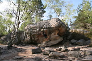 Fontainebleau climbing
