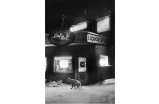 (Marc Riboud, 'Alaska', Etats-Unis, 1958 / Courtesy de Marc Riboud et galerie Polka, Paris)