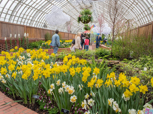 Stop and smell the flowers at Phipps Conservatory and Botanical Gardens