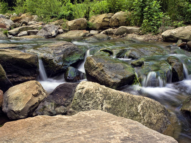 Take a hike in Frick Park