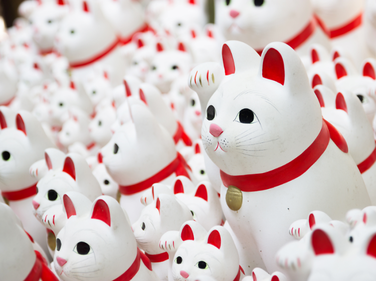 Count the lucky cats at Gotokuji Temple