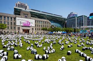 1600+ panda