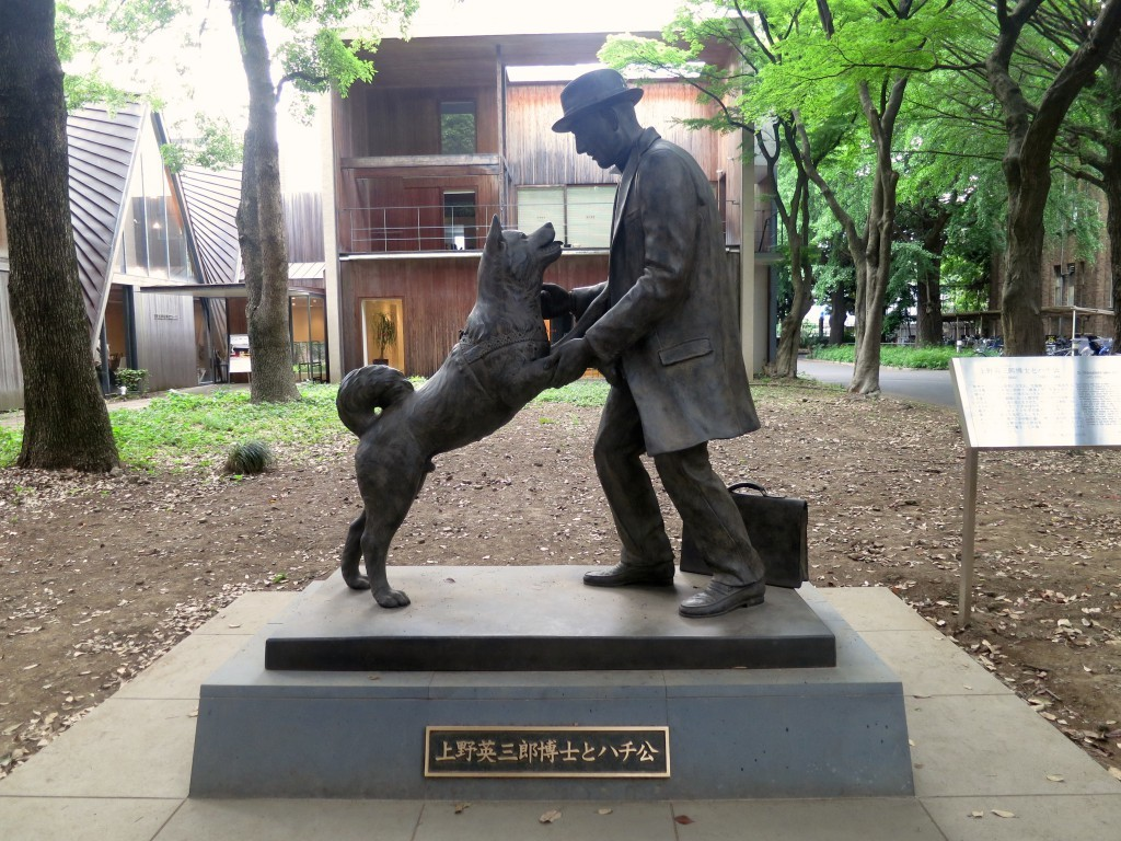 Another Hachiko