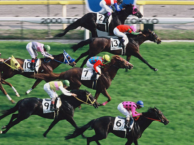 1. Flat racing: old favourite