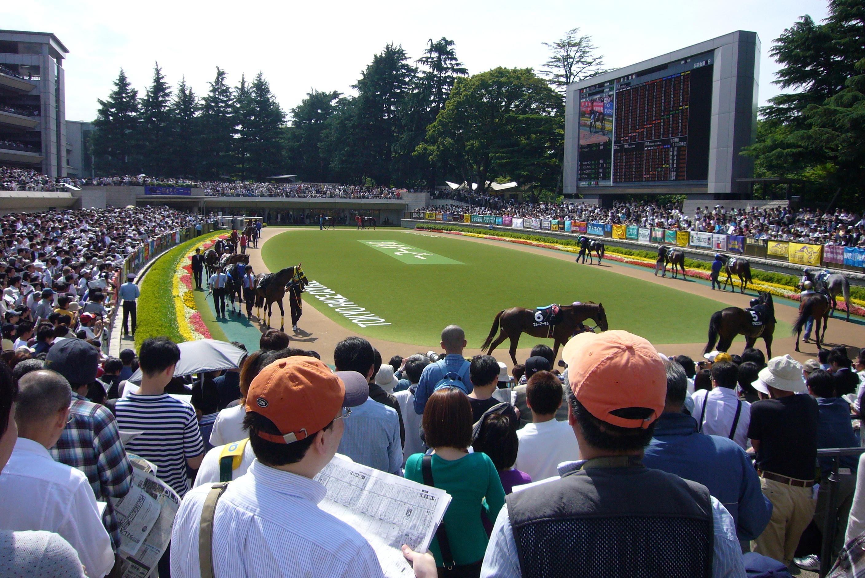 Tokyo Racecourse | Time Out Tokyo