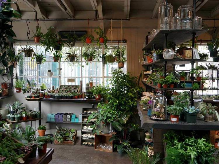 Browse the shops at Temescal Alley