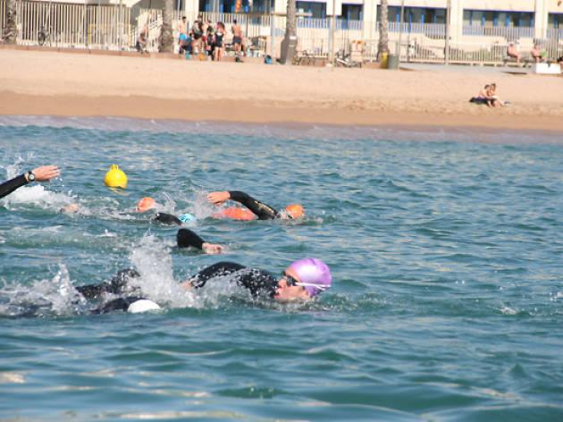 natació, mar, Club Natació Barcelona
