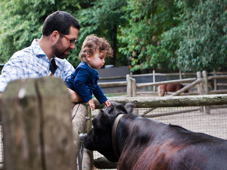 Prospect Park Zoo Barn & Garden