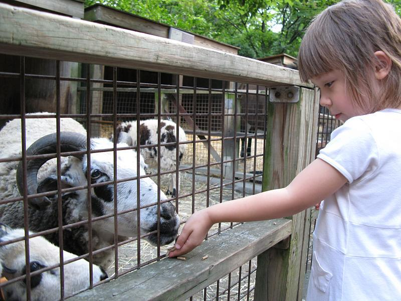 Bronx Children's Zoo