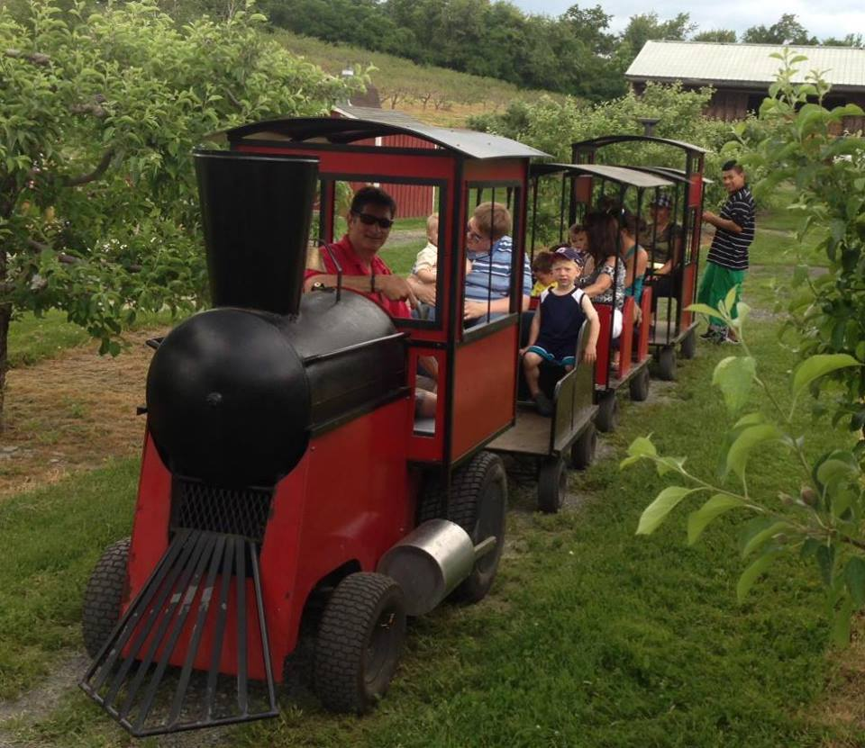 Best Strawberry Picking NY Spots For Kids And Families