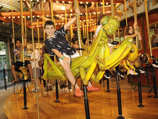 Bug Carousel (Bronx Zoo)