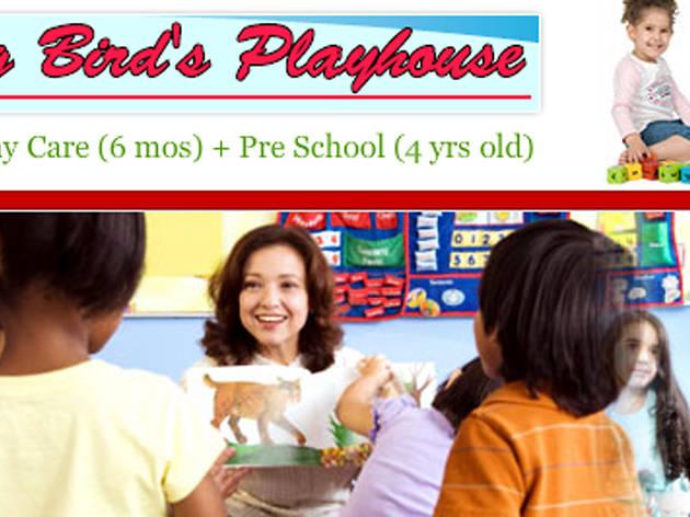 Big Bird Playhouse