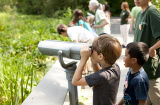 (Photograph: Courtesy The New York Botanical Garden)