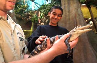 zoo fun days.jpg
