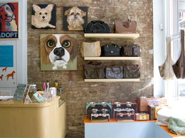 Best pet supply stores in nyc the best pet supply stores in nyc solutioingenieria Choice Image