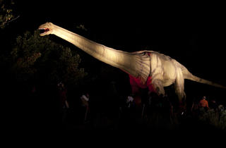 2012_09_20_dinosaurlighting-3107.jpg
