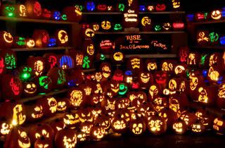 rise-jack-o-lanterns.jpg