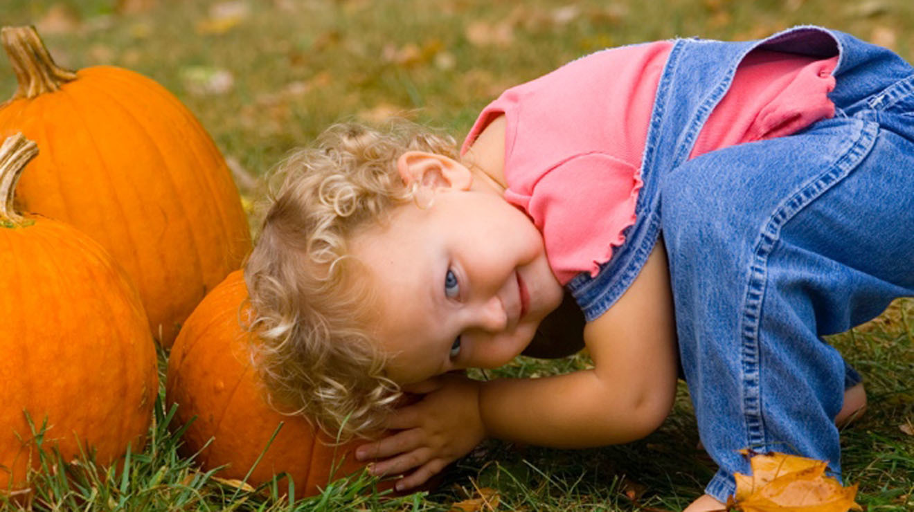 Where to go pumpkin picking near NYC with kids