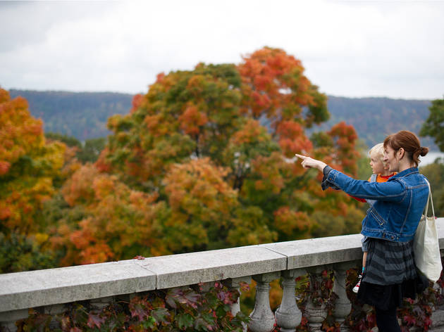 Where to see New York fall foliage