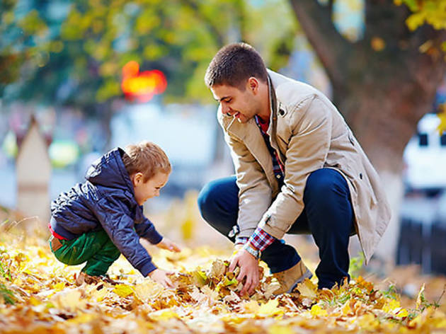 The best things to do in the fall with kids