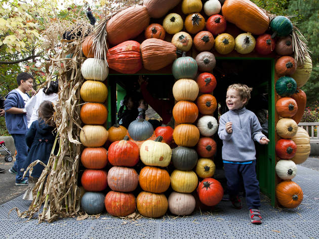Giant Pumpkin Carving Weekend and the Haunted Pumpkin Garden at