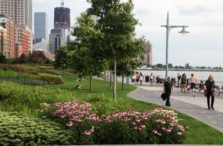 Hudson River Park Wild!