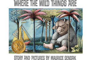 Are You a Wild Thing?
