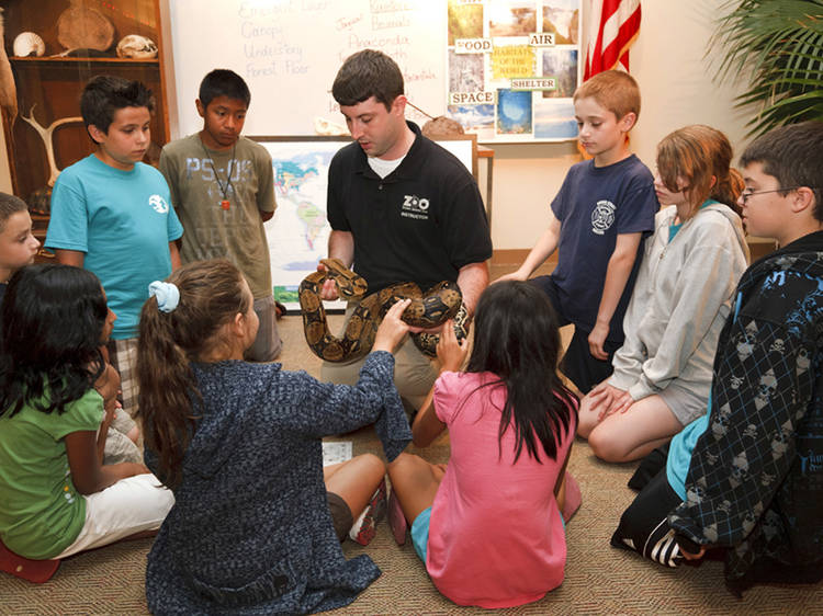 Best reptile exhibit: Staten Island Zoo