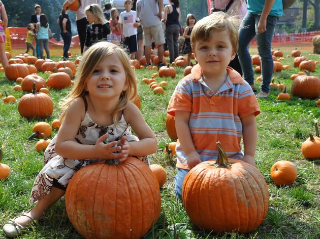 Sunnyside Gardens Park Oktoberfest
