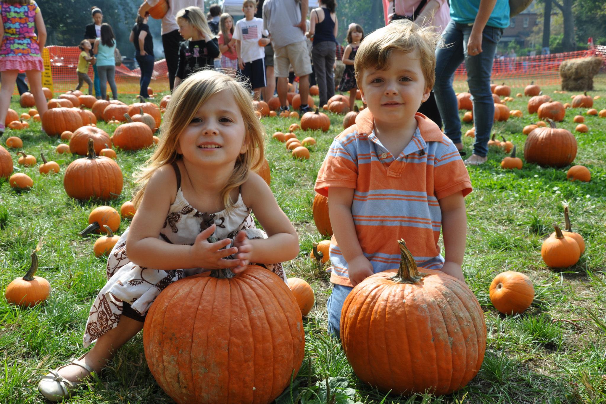 Sunnyside Gardens Park Oktoberfest | Things to do in New York Kids